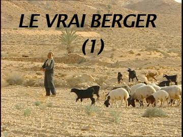 Le vrai berger (1)