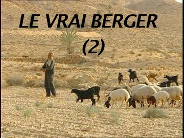 Le vrai berger (2)