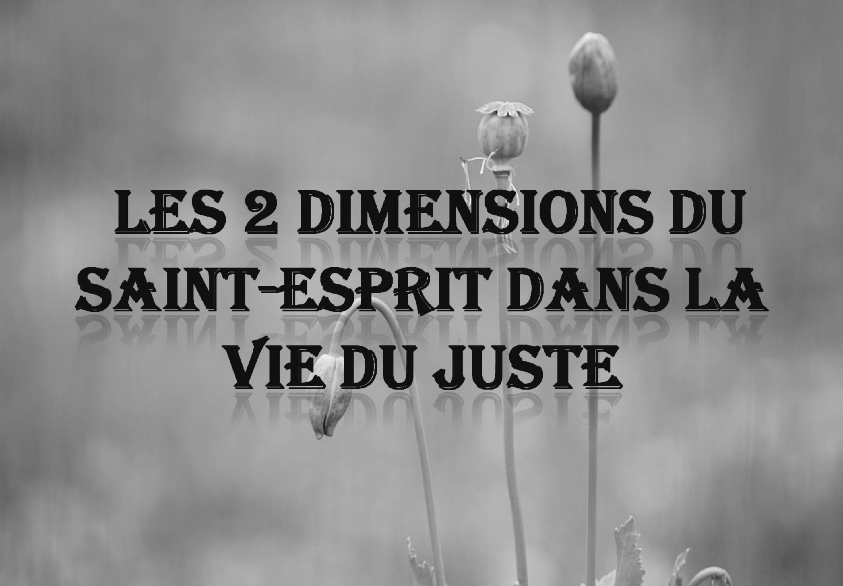 Les deux dimensions du St-Esprit dans la vie du juste